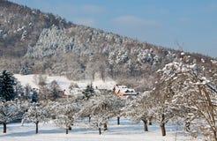 Kleines Dorf in einem schneebedeckten Wald Lizenzfreies Stockfoto