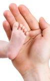 Kleines Fahrwerkbein des neugeborenen Babys in der großen Hand Stockbild