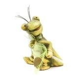 Kleines Froschspielzeug mit einem Wadenetz lizenzfreie stockfotos