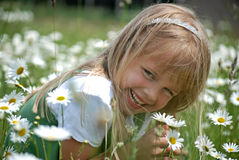 Kleines Fräulein Daisy Stockbild
