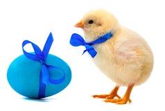 Kleines gelbes Küken mit blauem Bogen und Ostereiern Lizenzfreie Stockfotografie