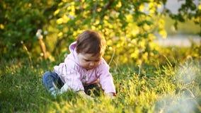 Kleines hübsches Baby, das auf grünem Gras im Park bei dem Sonnenuntergang sitzt stock footage