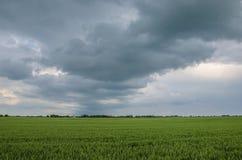 Kleines Haus auf einem grünen Feld Lizenzfreie Stockfotos