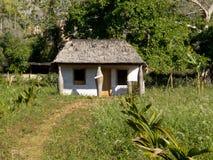 Kleines Haus gebaut mit drei merkwürdigen Stämmen Stockbilder