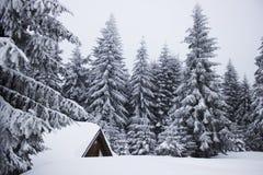 Kleines Haus im Schnee deckte Holz in den Schweizer Alpen ab Lizenzfreie Stockfotografie