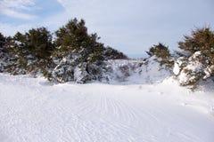 Kleines Haus im Schnee deckte Holz in den Schweizer Alpen ab Lizenzfreie Stockfotos