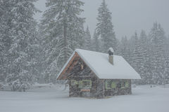 Kleines Haus im Schneesturm Stockfoto
