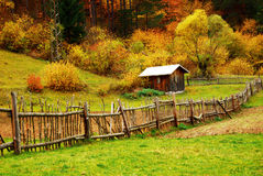 Kleines Haus im Wald Stockfotografie