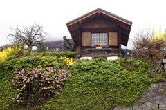 Kleines Haus mit Anlage Lizenzfreies Stockbild