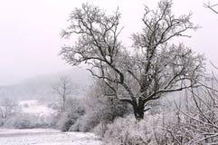 Kleines Haus nachts im Schnee Lizenzfreie Stockfotografie
