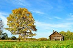 Kleines Haus und Eiche auf dem Gebiet Lizenzfreies Stockbild