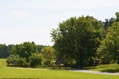Kleines Haus unter Bäumen stockbilder