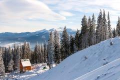 Kleines Haus unter den schneebedeckten Kiefern Lizenzfreie Stockbilder