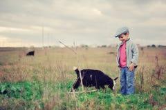 Kleines herdboy Stockfoto