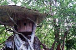 Kleines Holzhaus auf dem Baum, Haus für den Affen Stockbilder