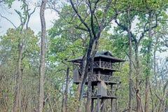 Kleines Holzhaus im Wald stockfoto