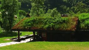 Kleines Holzhaus mit grünem Gras auf Dach in Fluss Mannweg in der Tür Sonniger Tag des Sommers stock video