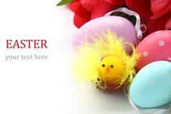 Kleines Huhn, bunte Ostereier und rosa Tulpen Stockbild