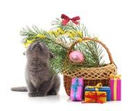 Kleines Kätzchen mit Weihnachtsdekorationen und -geschenken lizenzfreies stockbild