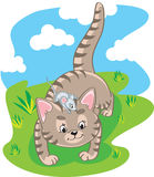 Kleines Kätzchen und Maus Lizenzfreie Stockfotos