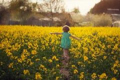 Kleines Kind, das auf gelbem Feld am sonnigen Sommertag läuft Rückseitige Ansicht lizenzfreie stockfotografie