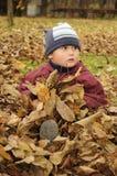 Kleines Kind, das in den Blättern sitzt Stockfoto