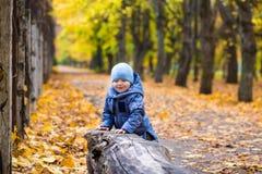 Kleines Kinderjunge 1 Jahre alte Wege auf gefallenen Blättern Lizenzfreie Stockfotos