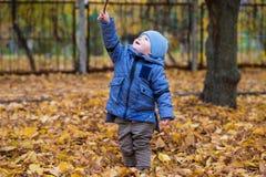 Kleines Kinderjunge 1 Jahre alte Wege auf gefallenen bunten Blättern Stockfotografie