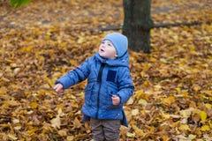 Kleines Kinderjunge 1 Jahre alte Wege auf gefallenen bunten Blättern Stockbilder