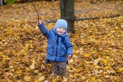 Kleines Kinderjunge 1 Jahre alte Wege auf gefallenen bunten Blättern Lizenzfreie Stockfotografie