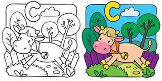 Kleines Kuh- oder Kalbmalbuch Alphabet C Stockbilder
