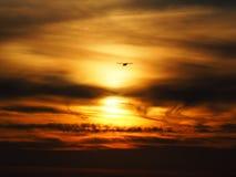 Kleines Landungflugzeug Lizenzfreies Stockbild