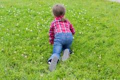 Kleines Mädchen auf dem Gras stockbild