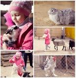 Kleines Mädchen auf einem Bauernhof mit Tieren stockbild
