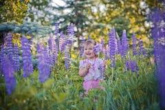 Kleines Mädchen auf einem Gebiet Lizenzfreie Stockfotos