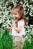 Kleines Mädchen auf einem Hintergrund ein Busch mit Blumen Lizenzfreie Stockfotografie