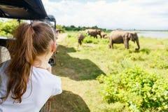 Kleines Mädchen auf Safari stockfoto