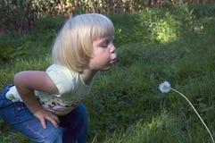 Kleines Mädchen brennt dangelion durch Stockbild