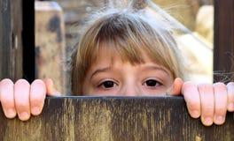 Kleines Mädchen, das über Zaun späht Stockbild