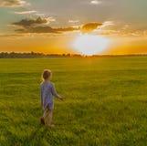 Kleines Mädchen, das allein die Wiese bei Sonnenuntergang geht Stockfotos