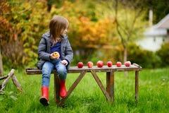 Kleines Mädchen, das auf einer Holzbank auf Herbst sitzt Lizenzfreie Stockfotografie