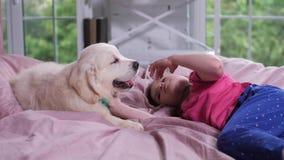 Kleines Mädchen, das den Welpen liegt auf Bett in der Kindertagesstätte streicht stock video footage