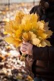 Kleines Mädchen, das ein Bündel Blätter hält Stockfotografie