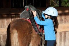Kleines Mädchen, das ein die Shetlandinseln-Pony sattelt Stockfotografie