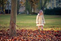 Kleines Mädchen, das in einen Park geht Stockfotos