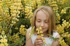 Kleines Mädchen, das gelbe Wildflowers riecht Stockfoto