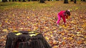Kleines Mädchen, das Herbstlaub im Park erfasst stock video