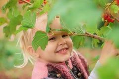 Kleines Mädchen, das hinter dem Laub sich versteckt Stockbilder