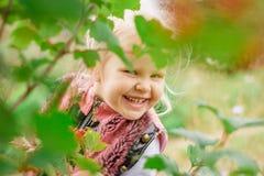 Kleines Mädchen, das hinter dem Laub sich versteckt Lizenzfreies Stockbild