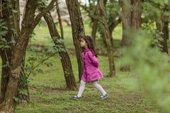 Kleines Mädchen, das in Holz geht Stockfotografie